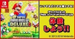 『NewスーパーマリオブラザーズUDX』体験会開催!