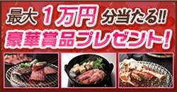 動画配信「ゲオTV」が豪華プレゼントキャンペーンを実施中!